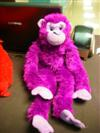 Chunky the Monkey is our Children's Ministry spokesperson :)) he's a great theologian!